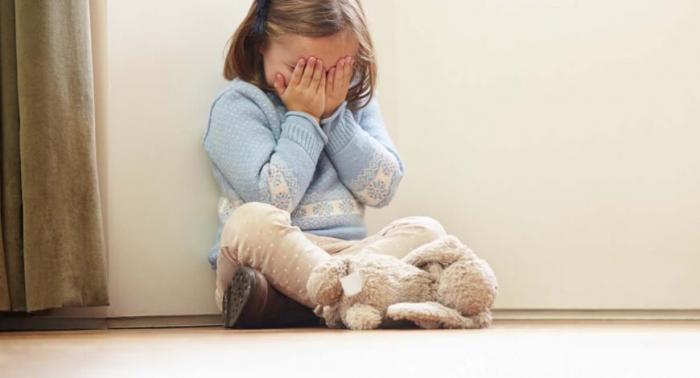 A criança e o adolescente vítimas de violência