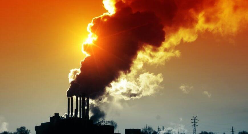 Curso grátis de Crimes Contra o Meio Ambiente