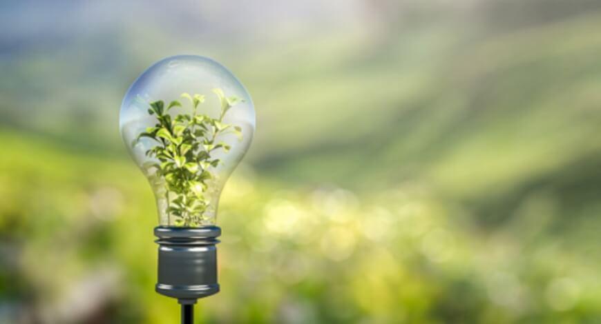 Curso grátis de Desenvolvimento Sustentável