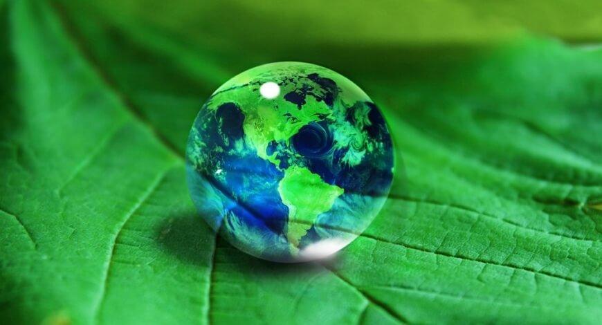 Curso grátis de Gestão Ambiental