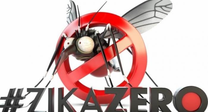 Prevenção e Combate ao mosquito Aedes aegypti