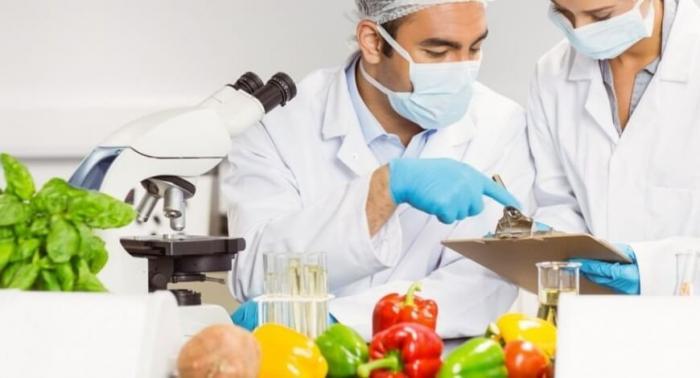 Segurança Alimentar no Contexto da Vigilância Sanitária